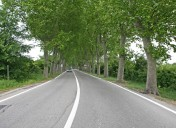 Joint Statement on Revision of the Road Infrastructure Safety Management Directive 2008/96