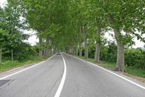 French départements sticking with 80km/h on rural roads