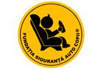 The Children's Car Safety Foundation
