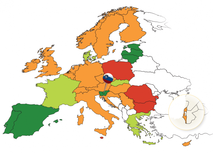 9th Annual Road Safety Performance Index (PIN) Report